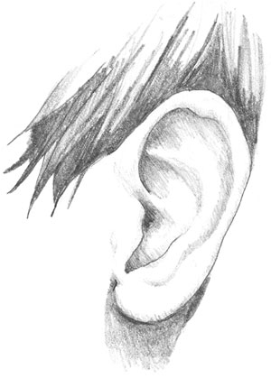 ear drawing 1